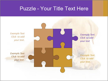0000074004 PowerPoint Template - Slide 43