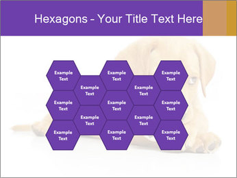 0000074004 PowerPoint Template - Slide 44