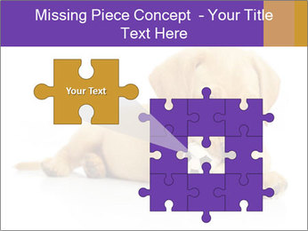 0000074004 PowerPoint Template - Slide 45