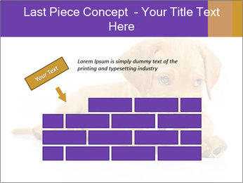 0000074004 PowerPoint Template - Slide 46