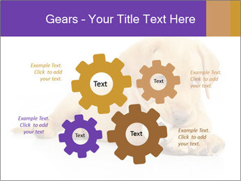 0000074004 PowerPoint Template - Slide 47