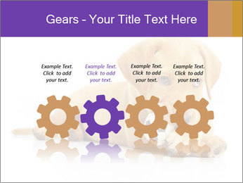 0000074004 PowerPoint Template - Slide 48