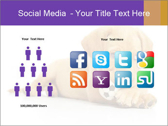 0000074004 PowerPoint Template - Slide 5