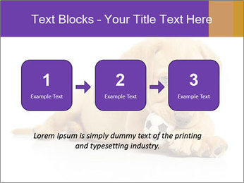 0000074004 PowerPoint Template - Slide 71
