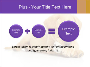 0000074004 PowerPoint Template - Slide 75