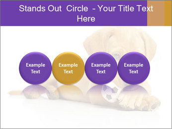 0000074004 PowerPoint Template - Slide 76