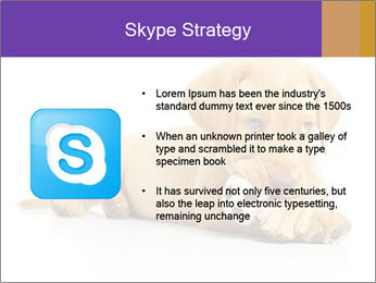 0000074004 PowerPoint Template - Slide 8