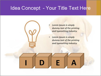 0000074004 PowerPoint Template - Slide 80