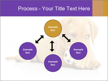 0000074004 PowerPoint Template - Slide 91