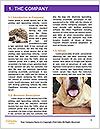0000074004 Word Template - Page 3