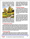 0000074007 Word Templates - Page 4