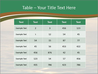 0000074009 PowerPoint Template - Slide 55