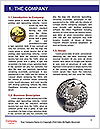 0000074021 Word Template - Page 3