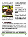 0000074022 Word Templates - Page 4