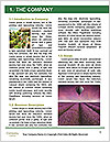 0000074027 Word Templates - Page 3