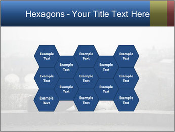 0000074030 PowerPoint Templates - Slide 44