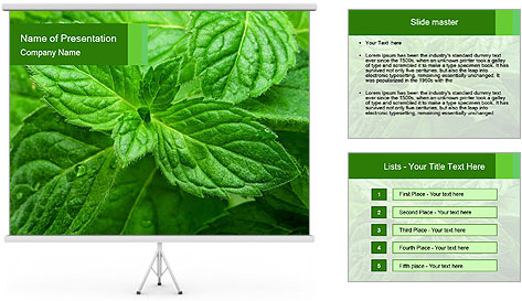 0000074033 PowerPoint Template