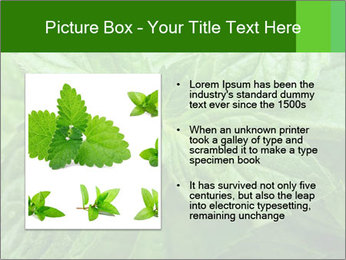 0000074033 PowerPoint Templates - Slide 13