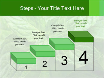 0000074033 PowerPoint Templates - Slide 64