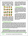 0000074033 Word Template - Page 4