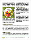 0000074034 Word Templates - Page 4