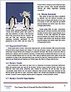 0000074041 Word Template - Page 4