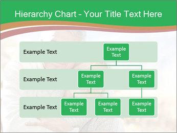 0000074045 PowerPoint Template - Slide 67