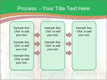 0000074045 PowerPoint Template - Slide 86