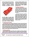 0000074052 Word Template - Page 4