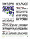0000074068 Word Templates - Page 4
