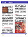 0000074071 Word Templates - Page 3