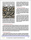 0000074071 Word Templates - Page 4