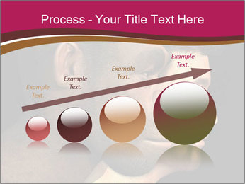 0000074073 PowerPoint Template - Slide 87