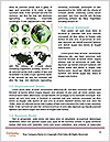 0000074081 Word Templates - Page 4