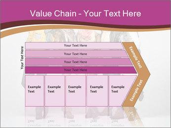 0000074087 PowerPoint Templates - Slide 27