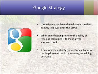 0000074090 PowerPoint Template - Slide 10