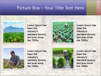 0000074090 PowerPoint Template - Slide 14