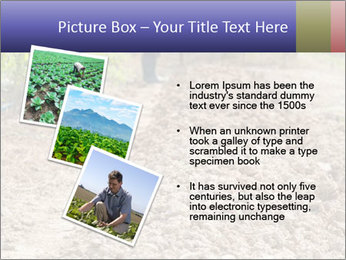 0000074090 PowerPoint Template - Slide 17