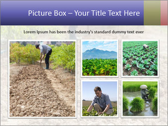 0000074090 PowerPoint Template - Slide 19