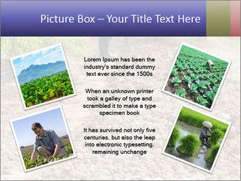 0000074090 PowerPoint Template - Slide 24