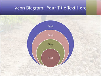 0000074090 PowerPoint Template - Slide 34