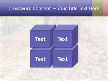 0000074090 PowerPoint Template - Slide 39