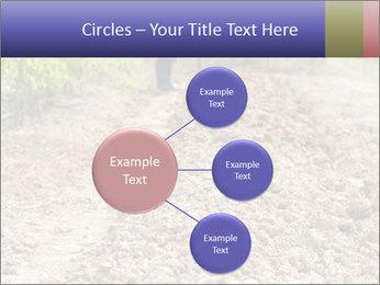 0000074090 PowerPoint Template - Slide 79