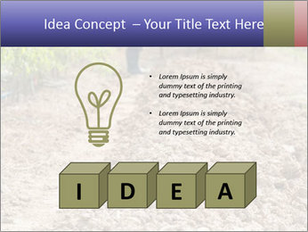 0000074090 PowerPoint Template - Slide 80