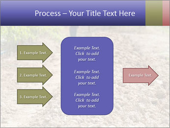 0000074090 PowerPoint Template - Slide 85