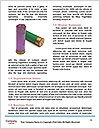 0000074093 Word Template - Page 4