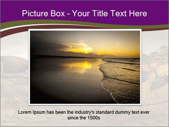 0000074099 PowerPoint Template - Slide 15