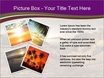 0000074099 PowerPoint Template - Slide 23