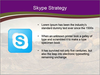 0000074099 PowerPoint Template - Slide 8