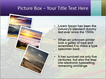 0000074102 PowerPoint Templates - Slide 17